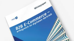 Download B2B Whitepaper