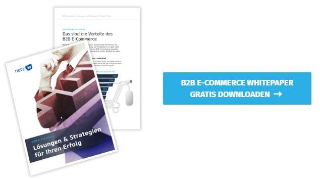 b2b ecommerce whitepaper
