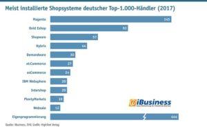 ibusiness Magento führendes System Deutschland