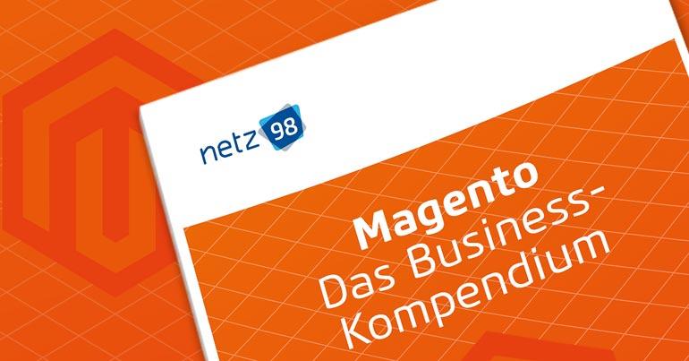Magento Business Kompendium