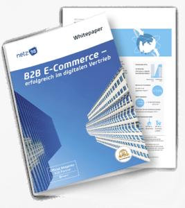 netz98 B2B E-Commerce Whitepaper