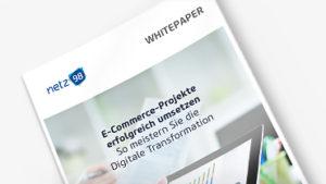 "Whitepaper ""E-Commerce-Projekte erfolgreich umsetzen"""