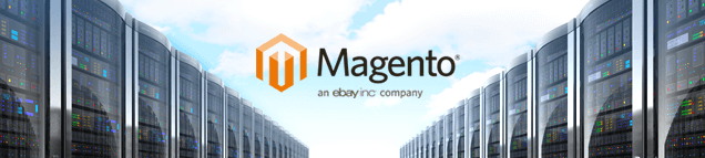 Hosting mit Magento