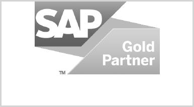 valantic - Muttergesellschaft von netz98 - ist SAP Gold Partner