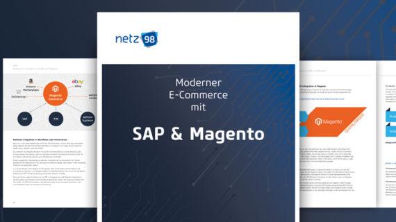 netz98 Magento SAP Whitepaper (Bild: netz98)