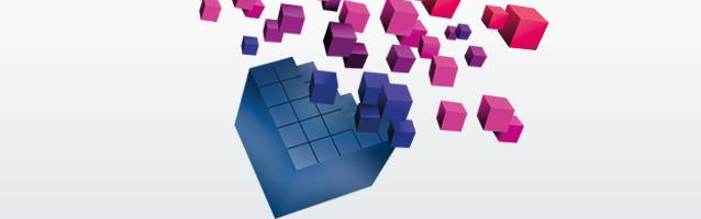 Zukunftsthemen E-Commerce 2015